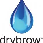 Don't sweat the small stuff… EWW reviews 'Drybrow'