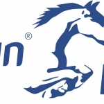 A HAPPY NEW YEAR FOR PETPLAN EQUINE'S SPONSORED RIDERS