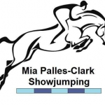 TRAIN TO WIN: MIA PALLES-CLARK – Showjumping Warm up at a competition.. How to make the best of the collecting ring and save your horse's jump for when it really counts!