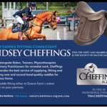 A SADDLER'S VIEW – Lindsey Cheffings