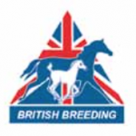 A Sterling Year For British Bred Equines Celebrated at The British Breeders 21st Anniversary Awards Dinner and Ceremony
