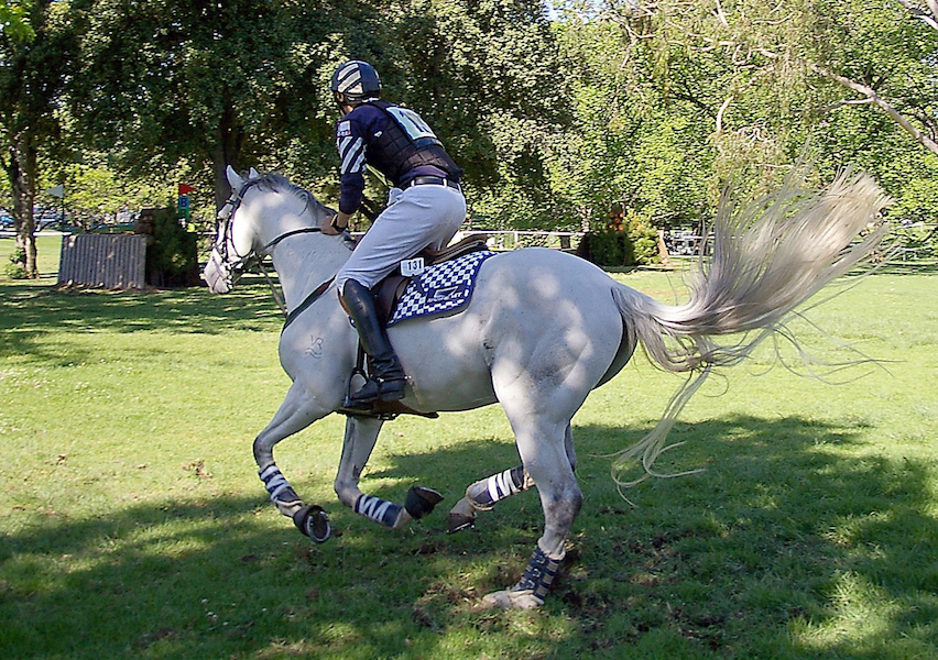 Getting the horse moving 'off your leg', for better XC reactions