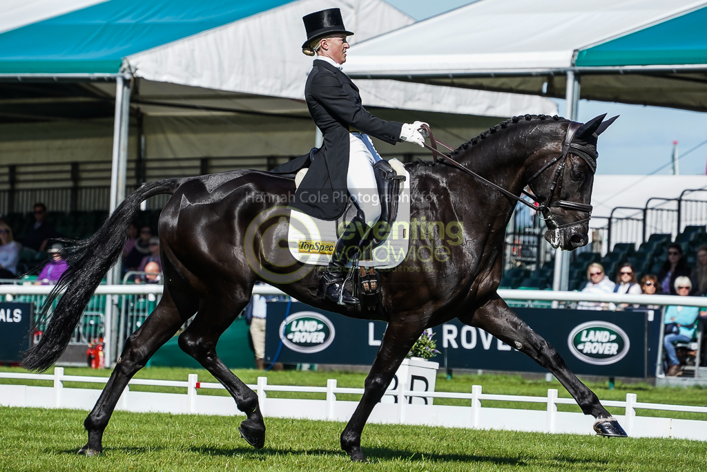 First-timer Stoddart takes early Burghley lead