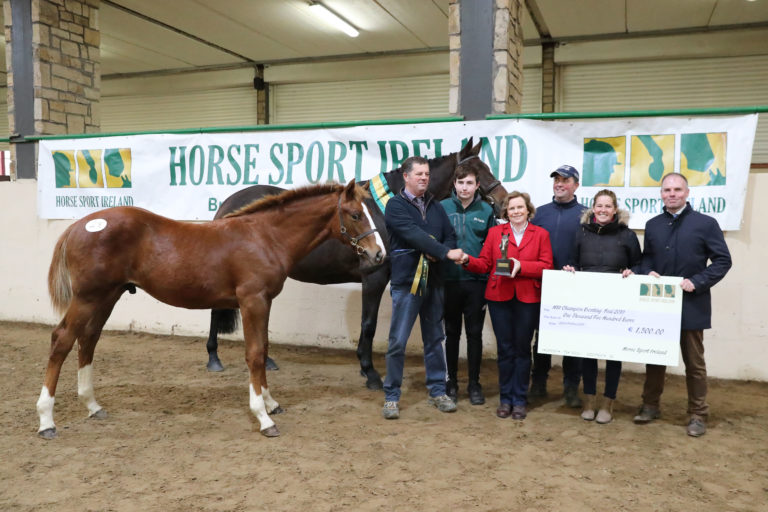 Winners crowned at Horse Sport Ireland Foal Championship Final