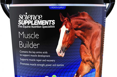 SCIENCE SUPPLEMENTS – Recovery